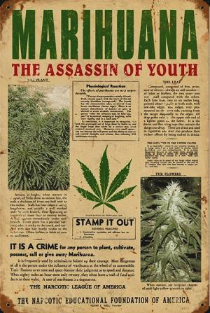 marijuana_assassin_youth